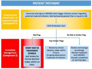 patient-pathway