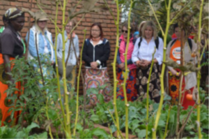 canadian-visitors-appreciating-christina-kazolas-garden-at-kalumo-ntchisi